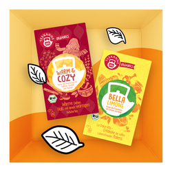 TEEKANNE Organics Warm & Cozy und Bella Limone